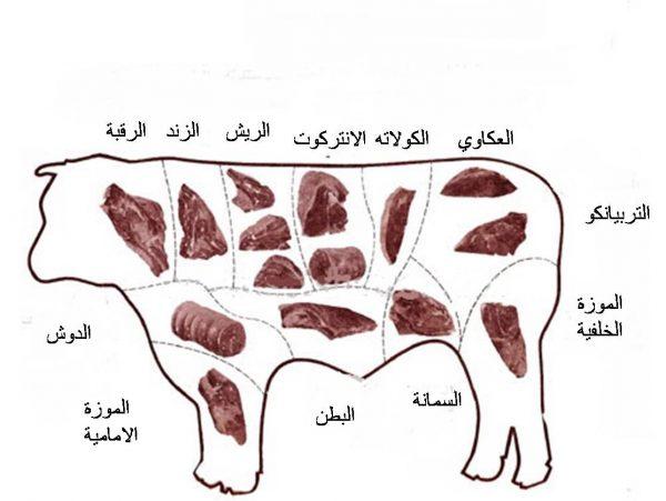قطعيات اللحوم واستخداماتها