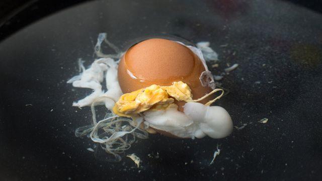 طريقة عمل اخطاء سلق البيض التي تفشله