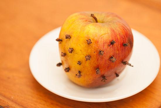طريقة التخلص من الذباب في المطبخ