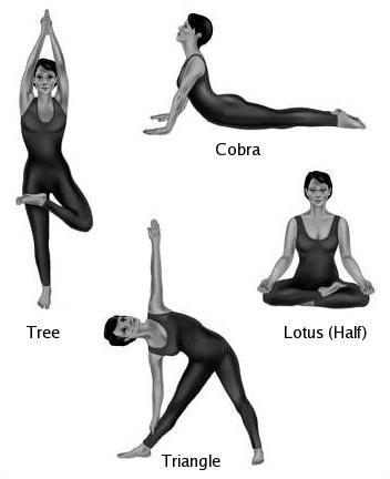أنواع اليوجا المختلفة